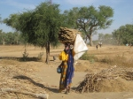 A woman carrying millet
